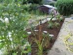 08.08.2010 weitere Arbeiten im Garten