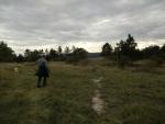...den Berg hoch und ein schönes Plateau öffnete sich vor uns