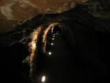 Am Montag haben wir den Nord-Harz gecruised und sind in eine Tropfsteinhöhle gegangen.